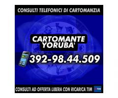(¯`·._(¯`·._(Cartomante Yoruba')_.·´¯)_.·´¯)