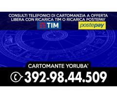 .•*´¨` Cartomante Yorubà ´¨`*•.