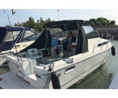 Barca pesca -cruiser