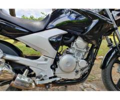 Yamaha ybr 250 - Immagine 4/4