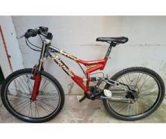 Mountain bike Golden panther MRS 408