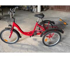 Triciclo per adulti