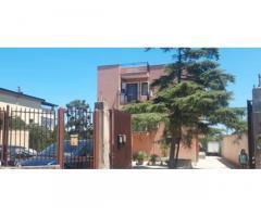 Appartamento 146 mq