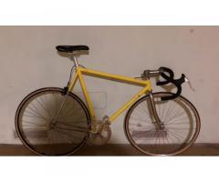 Bici Fixed Battaglin